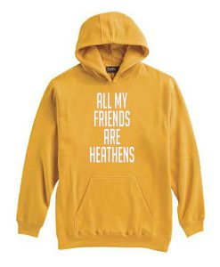 All My Friends Are Hetahens Hoodie